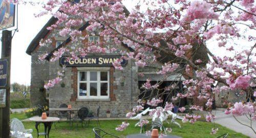 Golden Swan, Wilcot